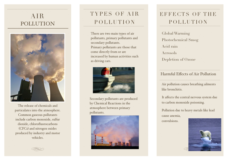 hazardous effects of air pollutants to the human body Faq air frequently asked questions to light the health and environmental effects of air pollutants air pollutants can enter a human body through.